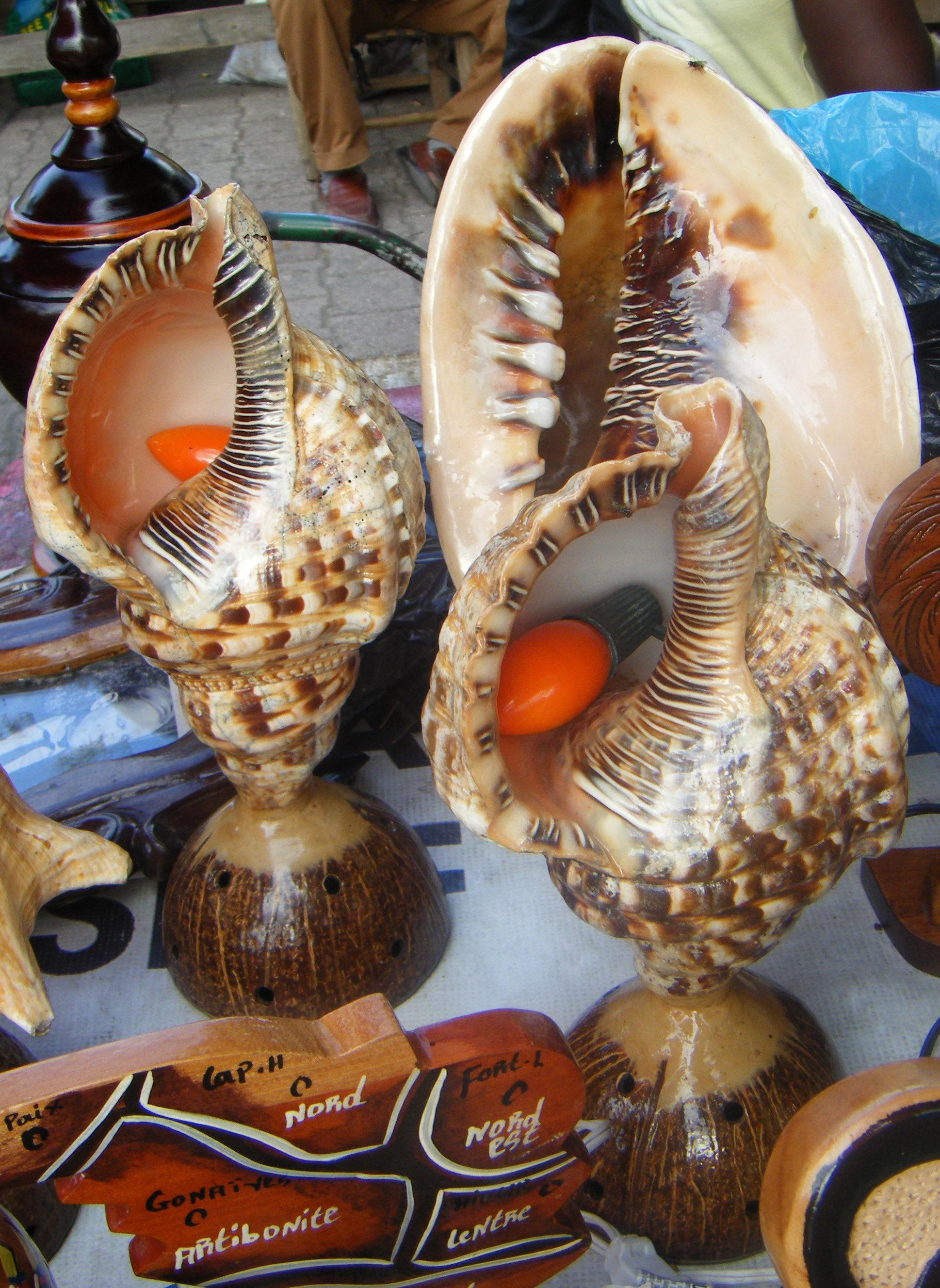 Deniz Kabukları ile Hayvan Figürü Yapımı